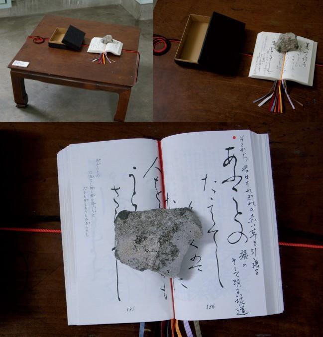 Bruno Pellier - Expériences à la surface, installation, 2010