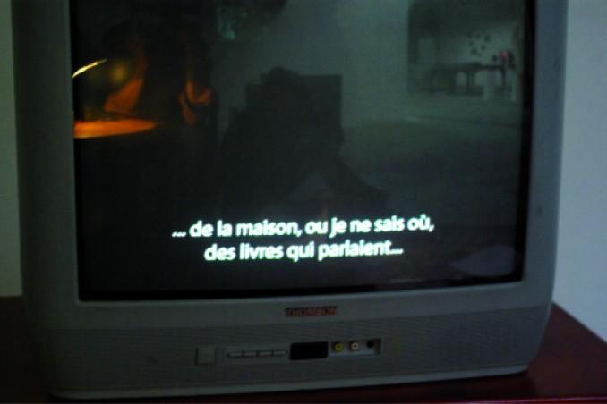 Bruno Pellier - Étrange, installation vidéo, 2010