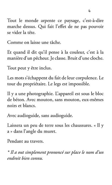 Bruno Pellier - Gris, Dictionnaire des longues distances III